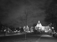 State House (El Alcalde de l'Antartida) Tags: boston massachusetts newengland night lights holidays illumination hill park common statehouse capitol government dome building architecture downtown cityscape landmark trees decorations winter blackwhite bw nocturnal skyline 230countriesmassachusetts