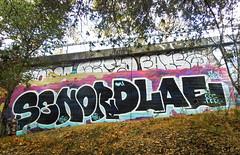 (gordon gekkoh) Tags: certo fatso senor dlae oakland graffiti