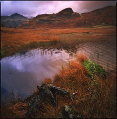 lake district (steve-jack) Tags: hasselblad 501cm 50mm fuji velvia 50 lake district film medium format 120 6x6 slide bleatarn cumbria