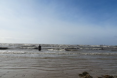 Crosby Beach (Fantasmaa) Tags: crosbybeach inglaterra england