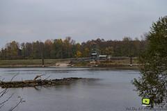 Sortie_photos_13_11_2016-4 (valdu67photographie) Tags: 2016 alsace automne basrhin eau faune rhin