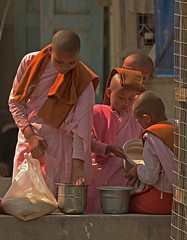 Sharing the Rice (Aubrey Stoll) Tags: novices monks students rice containers sharing mandalay burma myanmar south east asia gowns garments pink tin back wheat cage morning boys head wear religion budhism buddha spirituality training faith belief shaven heads