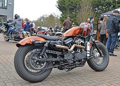 Harley and the Davidsons.. (Harleynik Rides Again.) Tags: sportster bobber hd harley motorcycle bike custompaint bikers nikondf harleynikridesagain