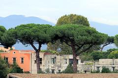 Vieuw from the Pompeii Theatre (Rick & Bart) Tags: italy italia campania naples pompeii historic unescoworldheritage roman rickvink rickbart canon eos70d ruins theatre