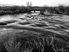 IMGP9996-Edit-Edit (Matt_Burt) Tags: bw bridge contest motion spring sunset tomichicreek water