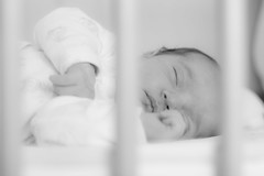 bigFormat-5824 (BDMarian) Tags: family love babies newborn