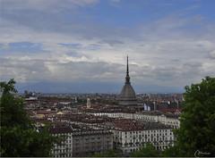 Torino......... (marina bertone) Tags: alberi marina montagne torino tetti case mole collina palazzi piazzavittorio nuvolette nikond90 dalmontedeicappuccini lamiasplendidacitt torinovistadallalto