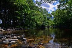 Stream (Stephen Whittaker) Tags: reflection water river scotland nikon stream pov low d5100 whitto27