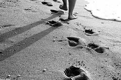Step by Step (Sonia Montes) Tags: blackandwhite byn blancoynegro canon agua playa arena pies sombras huellas