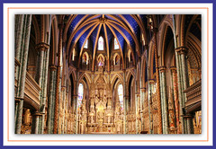 Beauty... It's All In The Details! (bigbrowneyez) Tags: blue windows wedding canada church beauty stars sussex golden downtown ottawa curves joy ceremony arches dome stunning bella ornate fabulous striking breathtaking intricate stelle gorgous bellissima notredamecathedralbasilica outstandingdetails beautyitsallinthedetails