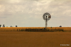 Typical Free State Landscapes (hannes.steyn) Tags: nature canon southafrica landscapes scenery explore 3000 freestate 4000 windpump interestingness237 i500 550d canonef70300mmf456isusm hoopstad hannessteyn canon550d eosrebelt2i explore20131122