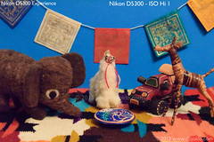 Nikon D5300 - ISO Hi 1 (25,600) (dojoklo) Tags: camera color book nikon iso tricks howto tips use setup guide manual dslr noise ebook learn beginner highiso intermediate quickstart digitalnoise d5300 setupguide recommendedsetting nikond5300