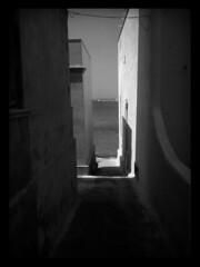 Trapani Porto , Torre ligny (OldLens24) Tags: sea mer mare sicily isle sicilia isola le sicile sicilien