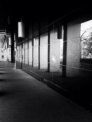 NIG (pao.photo) Tags: vienna wien spiegel uni universität spiegelung säulen nig säule