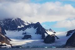 The bird in the Fjord (Heaven`s Gate (John)) Tags: seascape mountains bird ice topf25 norway circle landscape svalbard arctic glaciers fjord iceberg spitsbergen vestre 10faves 25faves johndalkin heavensgatejohn burgerbukta