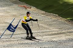 Skiing 010