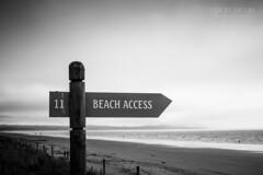 Here we are... (Cedpics) Tags: sea summer seascape beach water sand sable nelson nz tasman plage rabbitisland