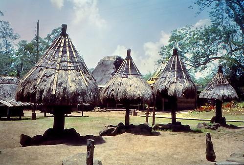 Row of Ngadu