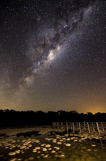 Milky Way over Lake Clifton's thrombolites