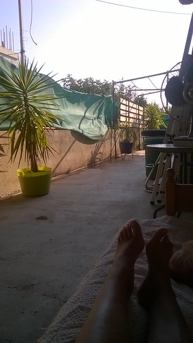 Recuperating in the back yard