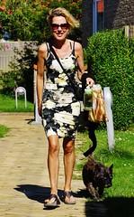 Tina (osto) Tags: dog pet animal denmark europa europe sony terrier zealand otto scandinavia danmark cairnterrier slt a77 sjlland osto alpha77 osto august2015