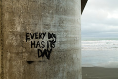 Every Dog Has Its Day (Timothy Andrew Stewart) Tags: new christchurch beach water pier surf zealand wharf newbrighton newbrightonbeach