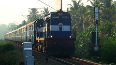 Ernakulam-Kannur Intercity Express (Ashwin WAP5) Tags: india station near railway greenery express through lush ernakulam intercity southindia pulls southernrailway ers indianrailways angadi kannur wdm3a koratti 14046r