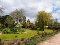 Singleton Park Swansea 25th May 2013 (4) (Gareth Lovering) Tags: park flowers gardens swansea wales botanical group olympus user omd lovering singleton asitis em5 oowug