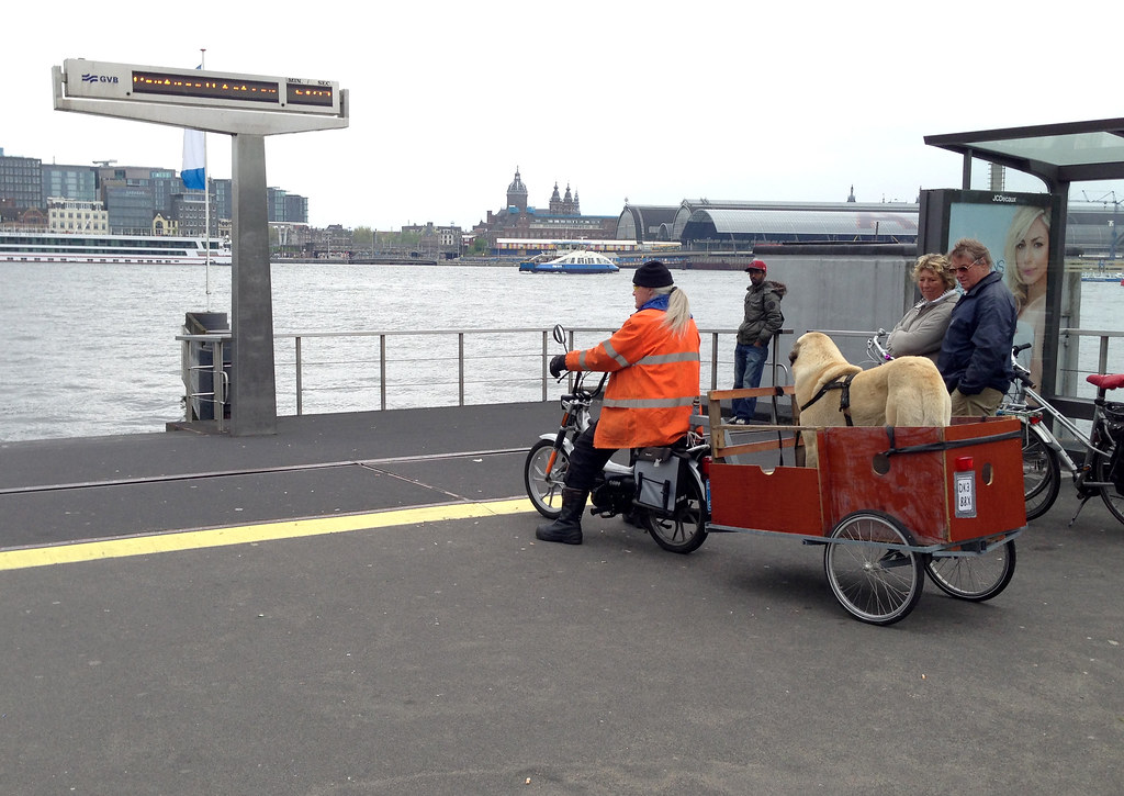 The World 39 S Best Photos Of Moped And Trailer Flickr Hive
