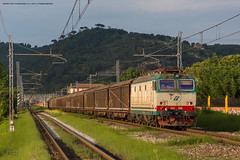 1010 - 633_086 CON MAGLIA SGANCIABILE + CARRI CHIUSI A MONTELUPO 23-5-2013 (treno ROVERETO - CALAMBRONE ) FULL HD (Frank Andiver TRAIN IN TUSCANY) Tags: italy train canon frank photo italia photos rail trains tuscany rails locomotive toscana treno tigre fs maglia trenitalia treni ferrovie binario 633 fullhd e633 andiver sganciabile frankandiver trainintuscany