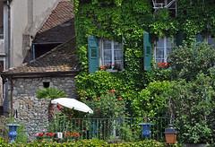 Lutry, Vaud, Switzerland, Geneva Lake (photoriel) Tags: summer house lake flower water rose garden switzerland boat village balcony vaud genevalake lutry