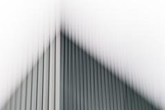 Synagoge (koeb) Tags: lines vertical synagogue synagoge pan mainz icm mayence