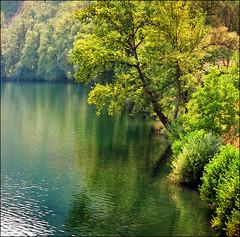 Beauty is in the eye of the beholder - o (Katarina 2353) Tags: landscape photography photo nikon serbia srbija katarinastefanovic katarina2353