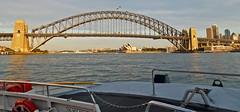 The Wider View (missnoma) Tags: icon operahouse harbourbridge sydneyharbourbridge performingartscentre theoperahouse thecoathanger multivenue twoicons cbdtonorthshore