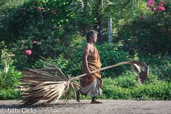 ... (Nithi clicks) Tags: brown india lady female women village market head walk goods ethnic minority tamilnadu