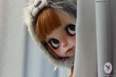 Peek a boo *tomorrow*  ADOPTED