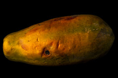 One Eyed Papaya (Bill Gracey) Tags: red orange color green texture nature yellow fruit colorful shadows papaya textures reflector filllight directionallight offcameraflash tabletopphotography