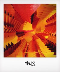 "#DailyPolaroid of 10-11-13 #43 • <a style=""font-size:0.8em;"" href=""http://www.flickr.com/photos/47939785@N05/10839291084/"" target=""_blank"">View on Flickr</a>"