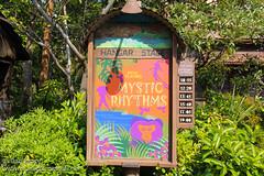Mystic Rhythms