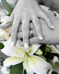 "Wedding Flowers Coventry - Nuleaf Florists <a style=""margin-left:10px; font-size:0.8em;"" href=""http://www.flickr.com/photos/111130169@N03/11310102195/"" target=""_blank"">@flickr</a>"