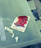 Chernobyl 03688 (Cortez77_fr same nickname on Ipernity) Tags: travel snow radiation ukraine card urbanexploration powerplant ukrainian greeting zone abandonned ussr fallout chernobyl urbex tchernobyl pripyat sievert pripiat 26april1986 radiaoactive callofpripyat chernobylexclusionzone soloeast 260486 reactorn4