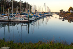 Coyote Point Yacht Harbor (Bob Stronck) Tags: sanmateocounty stronckphotocom ©2013rmstronck coyotepointyachtharbor