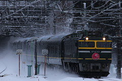 トワイライトエクスプレス (Satoshi Kojima) Tags: 雪 湖西線 ef81 トワイライトエクスプレス 永原