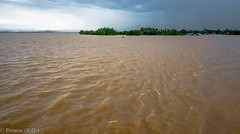 After the Storm on the Mekong River, Vietnam (Peraion) Tags: trees sky clouds river asia waves vietnam land vegetation mekong