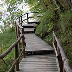 Unterhalb der Rügener Kreidefelsen auf Holzstufen hinab zum Ostseeufer (3) thumbnail