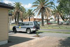 **)( (jamiehladky) Tags: 120 film truck palms 4x4 sydney australia palm palmtrees palmtree nsw 6x9 medium portra ingleburn iso160 portra160 gw690 gw690iii jamiehladky hladky