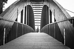 Bridge 2010 (Paulo N. Silva) Tags: