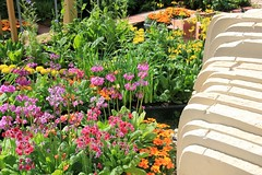 RHS Chelsea Flower Show 2014 (Karen Roe) Tags: world show camera city uk greatbritain england plants inspiration flower london english public gardens female digital canon relax landscape geotagged photography photo chelsea day photographer shot image unitedkingdom gardening landscaping famous capital may picture visit snap tourist photograph gb dslr visitor picturesque trade grounds planting stalls rhs 2014 royalhorticulturalsociety 550d karenroe rhschelseaflowershow canoneos550d