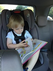 """Paul Reads in the Car • <a style=""""font-size:0.8em;"""" href=""""http://www.flickr.com/photos/109120354@N07/32731536850/"""" target=""""_blank"""">View on Flickr</a>"""
