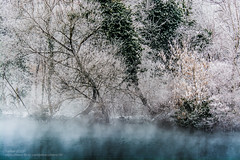Dancing lady over the foggy lake (-REcallable-Memories-of-ET-) Tags: 2017 esze hungary nikon tamas tél winter d5200 snow